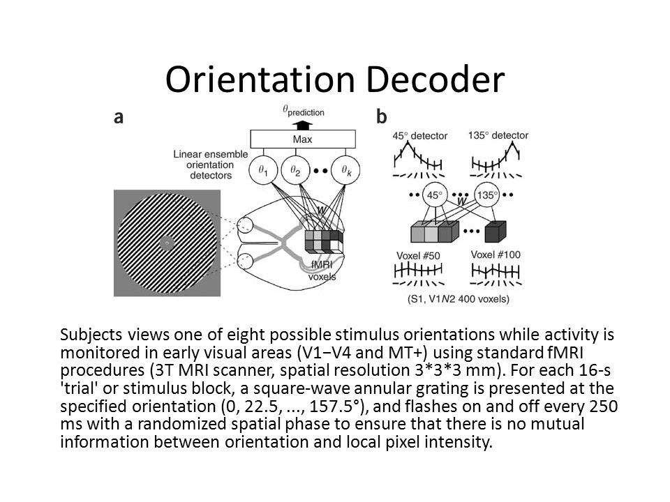 Orientation Decoder Subjects views one of eight possible stimulus orientations while activity is monitored in early visual areas (V1−V4 and MT+) using standard fMRI procedures (3T MRI scanner, spatial resolution 3*3*3 mm).