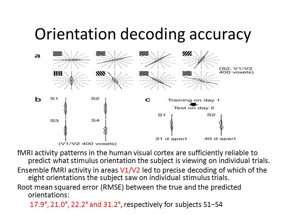 Orientation decoding accuracy fMRI activity patterns in the human visual cortex are sufficiently reliable to predict what stimulus orientation the subject is viewing on individual trials.