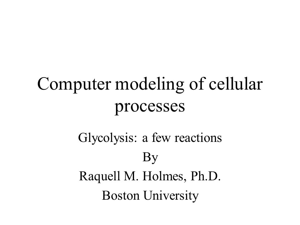 Computer modeling of cellular processes Glycolysis: a few reactions By Raquell M. Holmes, Ph.D. Boston University