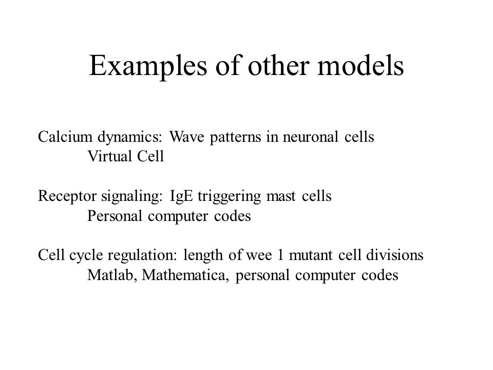 Examples of other models Calcium dynamics: Wave patterns in neuronal cells Virtual Cell Receptor signaling: IgE triggering mast cells Personal compute