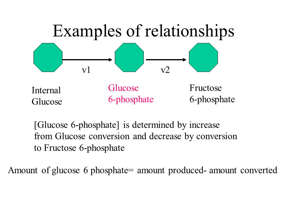 Examples of relationships Internal Glucose [Glucose 6-phosphate] is determined by increase from Glucose conversion and decrease by conversion to Fruct