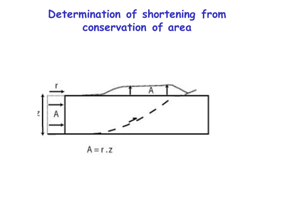 Determination of shortening from conservation of area