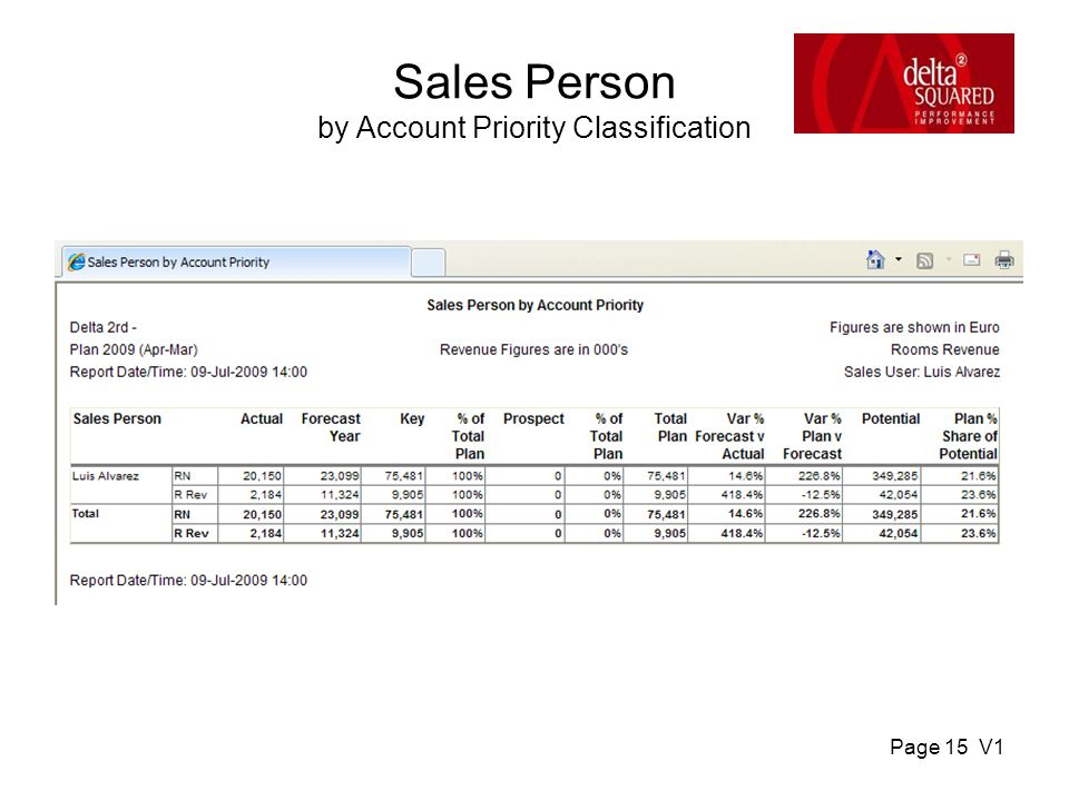 Page 15 V1 Sales Person by Account Priority Classification