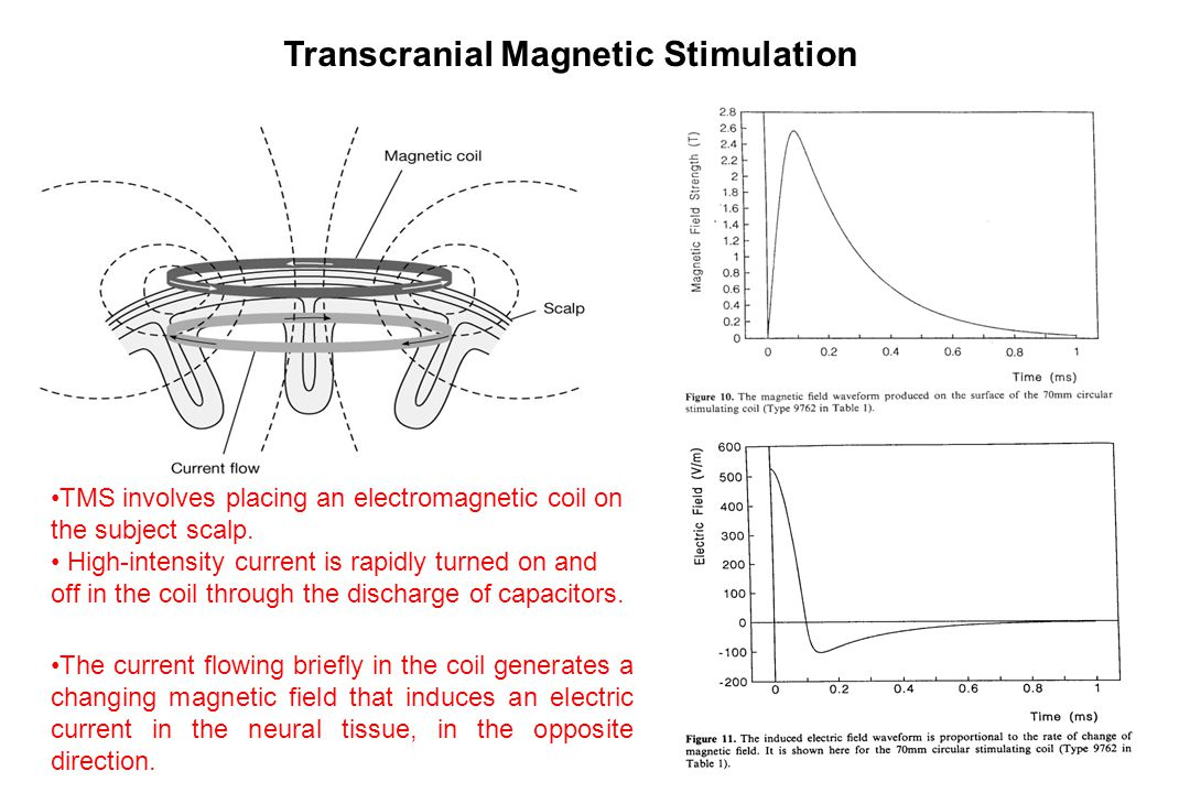 Transcranial Magnetic Stimulation TMS involves placing an electromagnetic coil on the subject scalp.