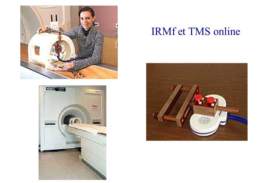 IRMf et TMS online