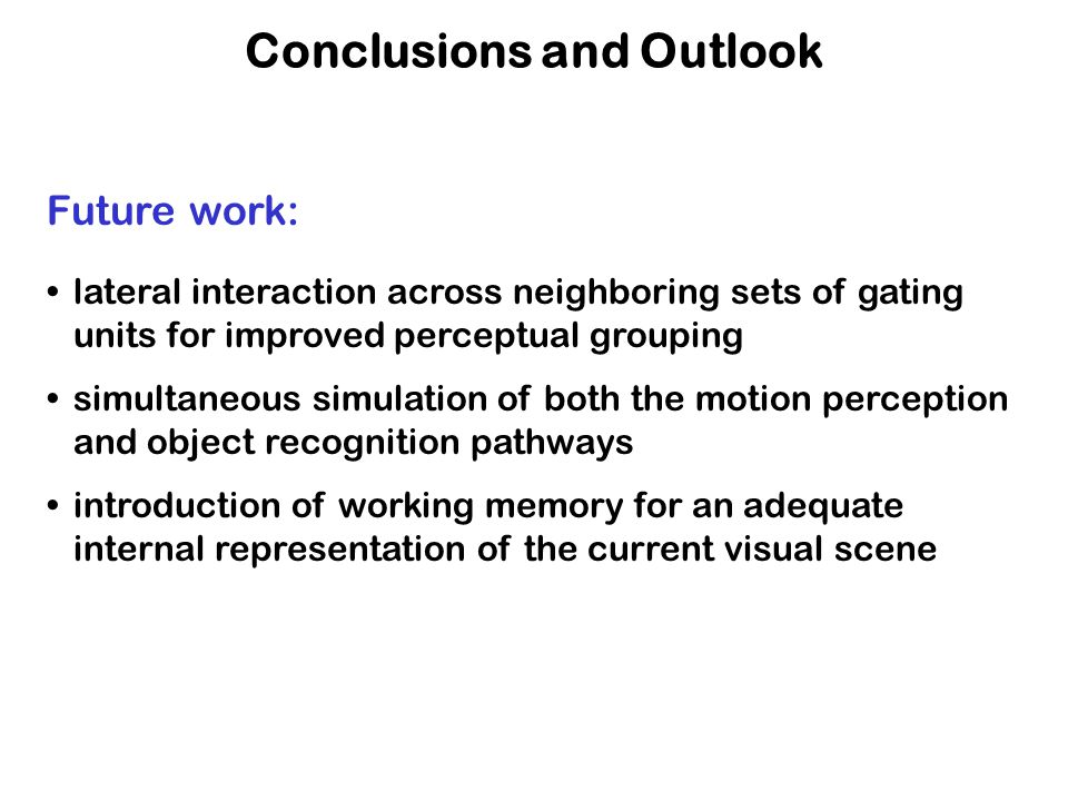 Conclusions and Outlook Future work: lateral interaction across neighboring sets of gating units for improved perceptual grouping simultaneous simulation of both the motion perception and object recognition pathways introduction of working memory for an adequate internal representation of the current visual scene