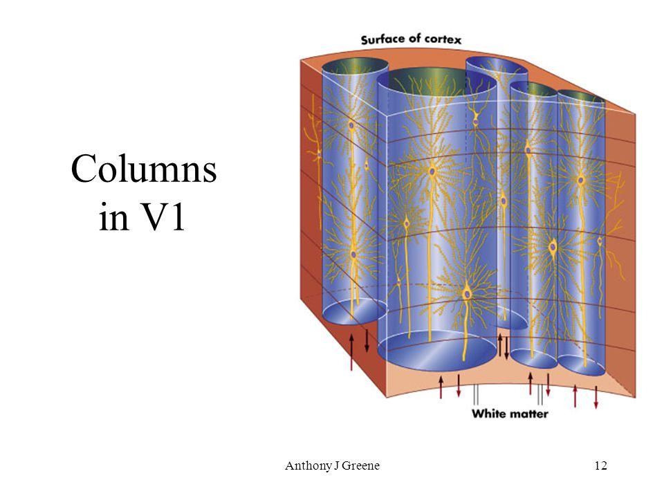Anthony J Greene12 Columns in V1