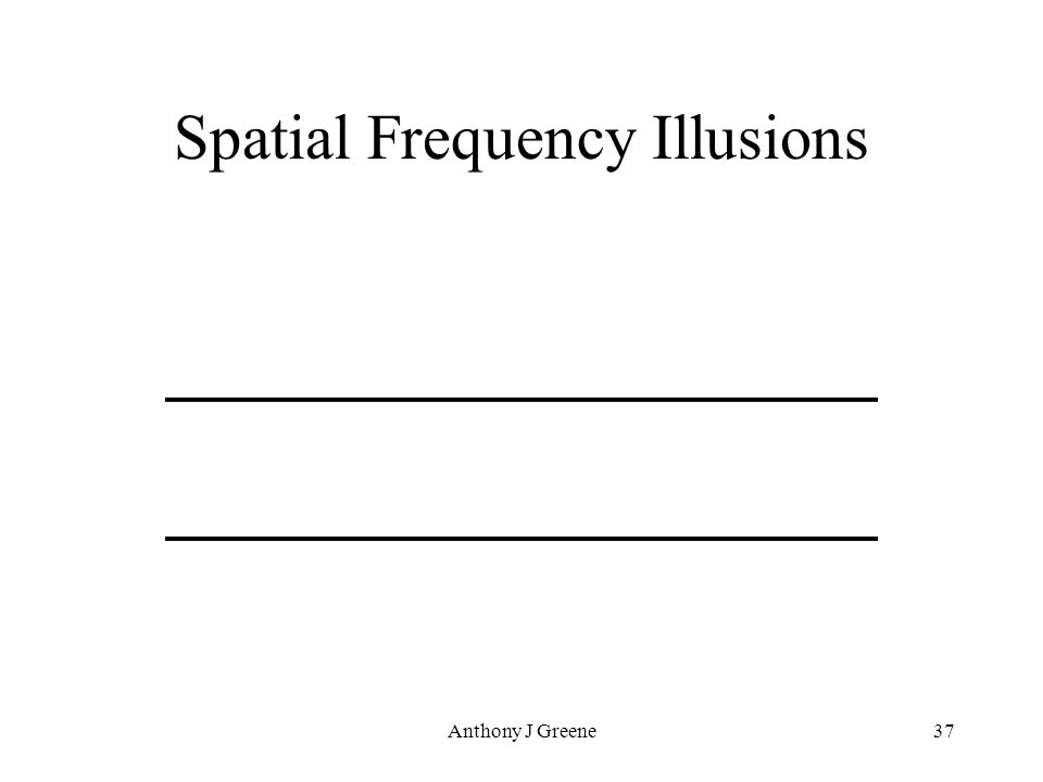 Anthony J Greene37 Spatial Frequency Illusions