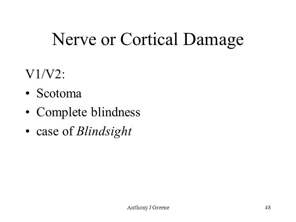 Anthony J Greene48 Nerve or Cortical Damage V1/V2: Scotoma Complete blindness case of Blindsight