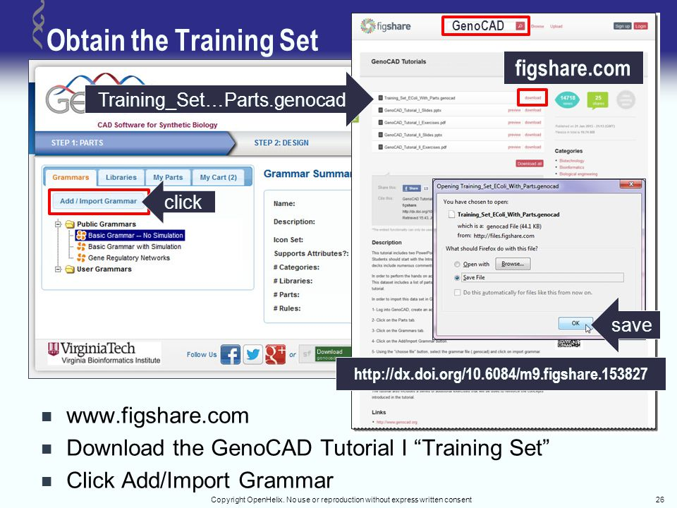 "Obtain the Training Set www.figshare.com Download the GenoCAD Tutorial I ""Training Set"" Click Add/Import Grammar Copyright OpenHelix. No use or reprod"