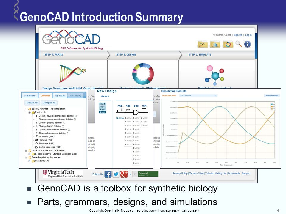 Copyright OpenHelix. No use or reproduction without express written consent44 GenoCAD Introduction Summary GenoCAD is a toolbox for synthetic biology