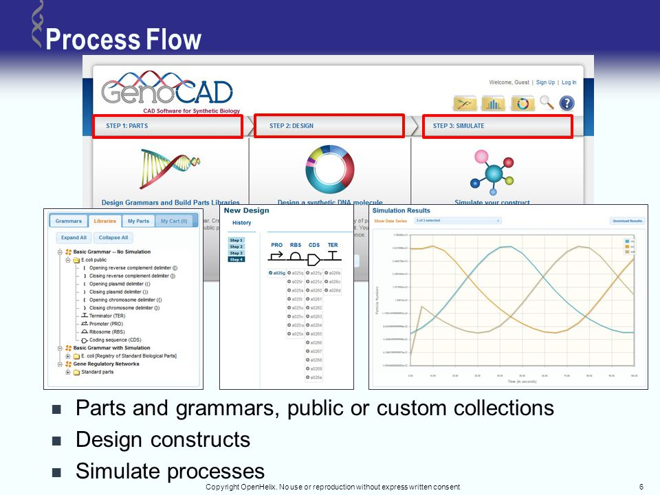 Data Model Parts and Libraries Grammar and Rules Design your constructs Copyright OpenHelix.