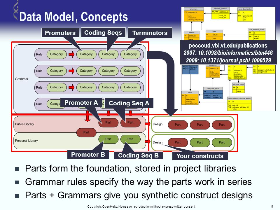 Data Model, Concepts Parts form the foundation, stored in project libraries Grammar rules specify the way the parts work in series Parts + Grammars gi