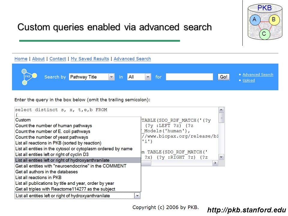 PKB C BA Custom queries enabled via advanced search