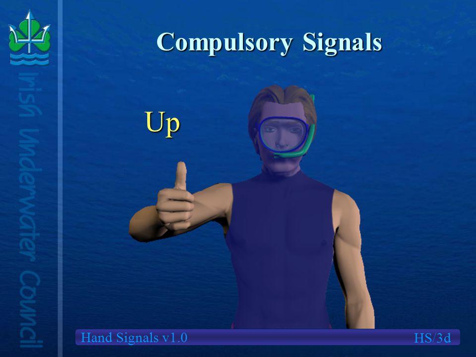 Hand Signals v1.0 Compulsory Signals HS/3d Up