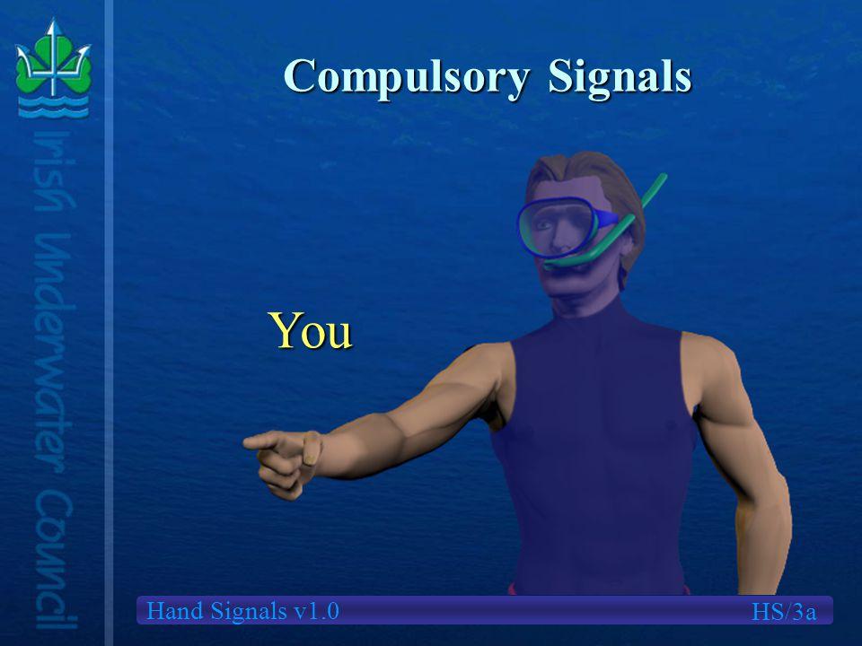 Hand Signals v1.0 Compulsory Signals You HS/3a