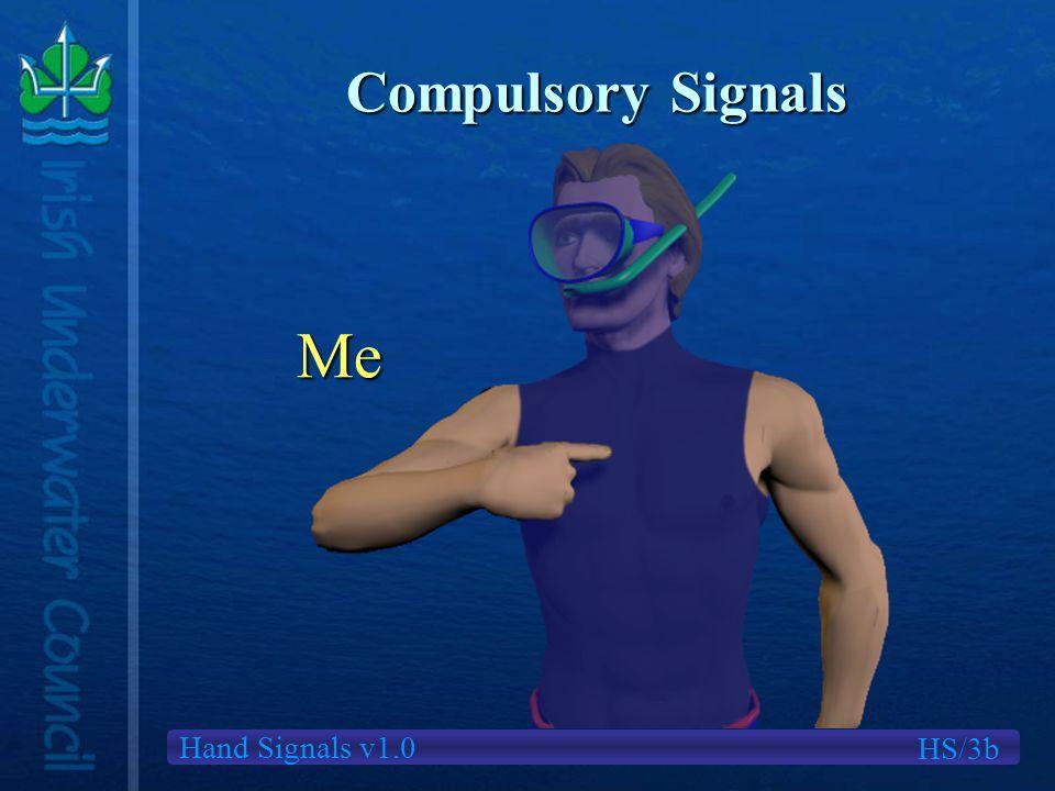 Hand Signals v1.0 Compulsory Signals Me HS/3b
