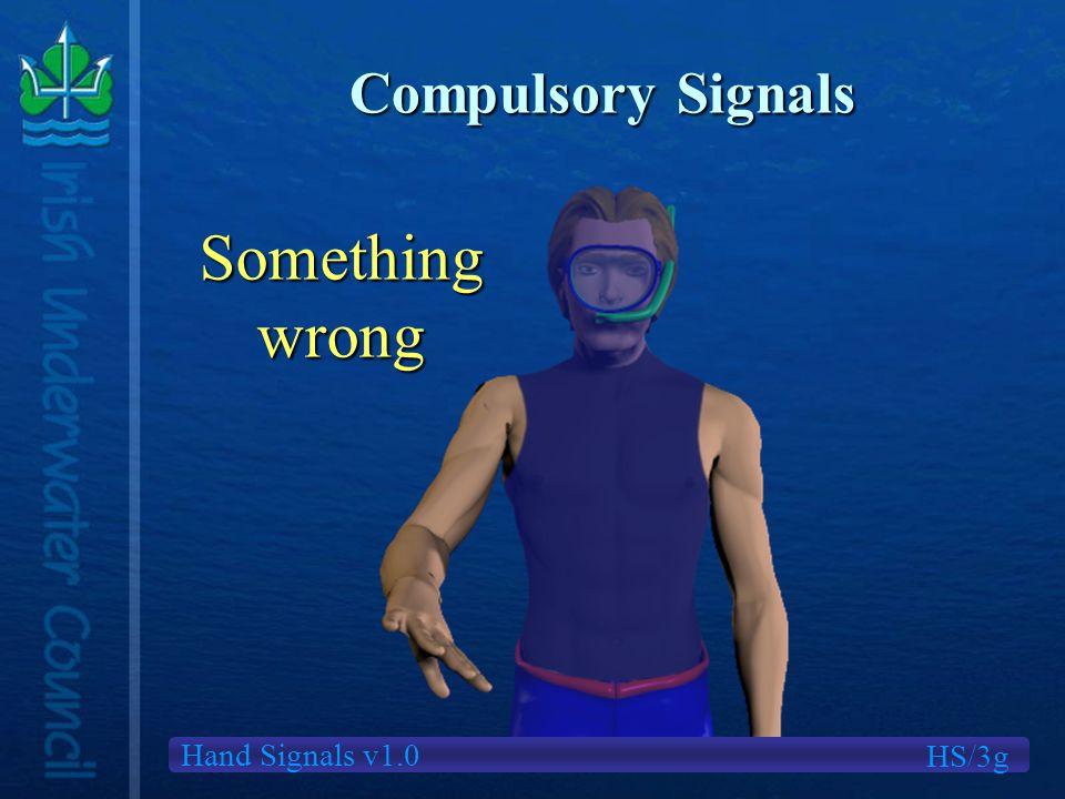 Hand Signals v1.0 Compulsory Signals Somethingwrong HS/3g