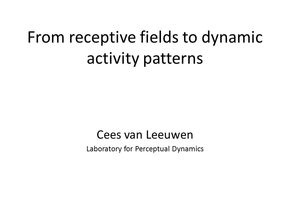 From receptive fields to dynamic activity patterns Cees van Leeuwen Laboratory for Perceptual Dynamics