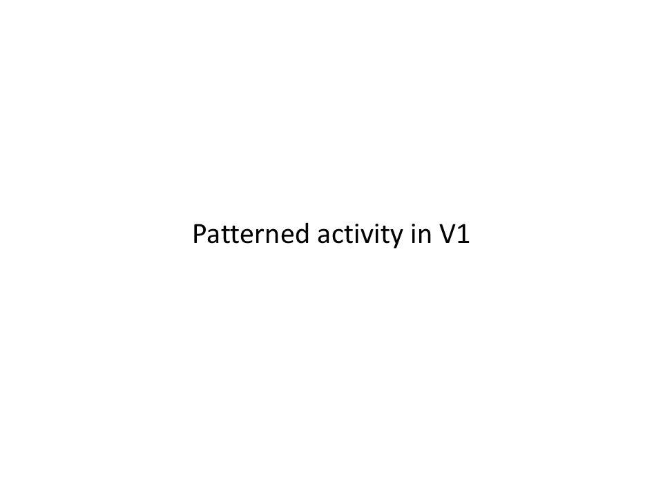 Patterned activity in V1