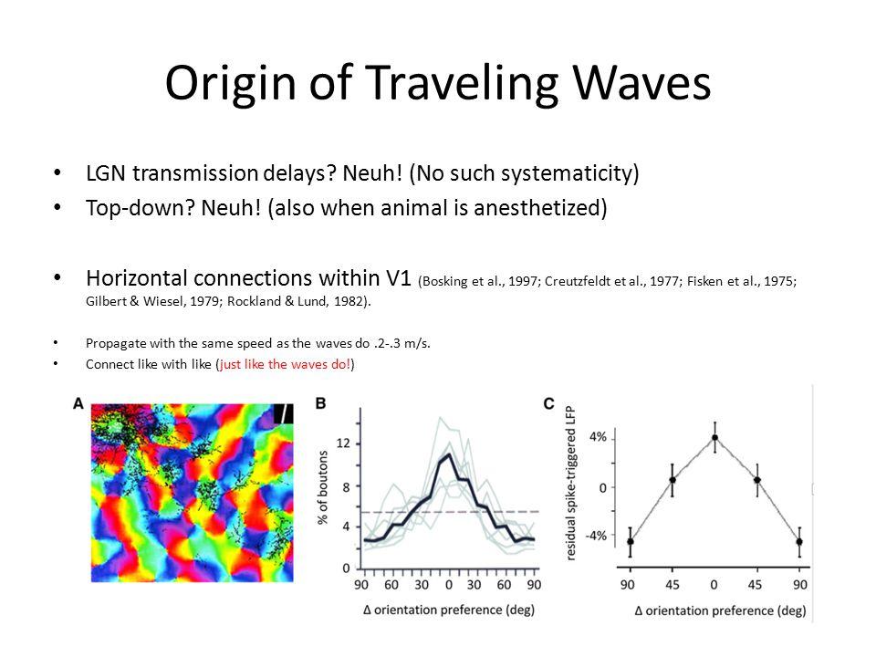 Origin of Traveling Waves LGN transmission delays.