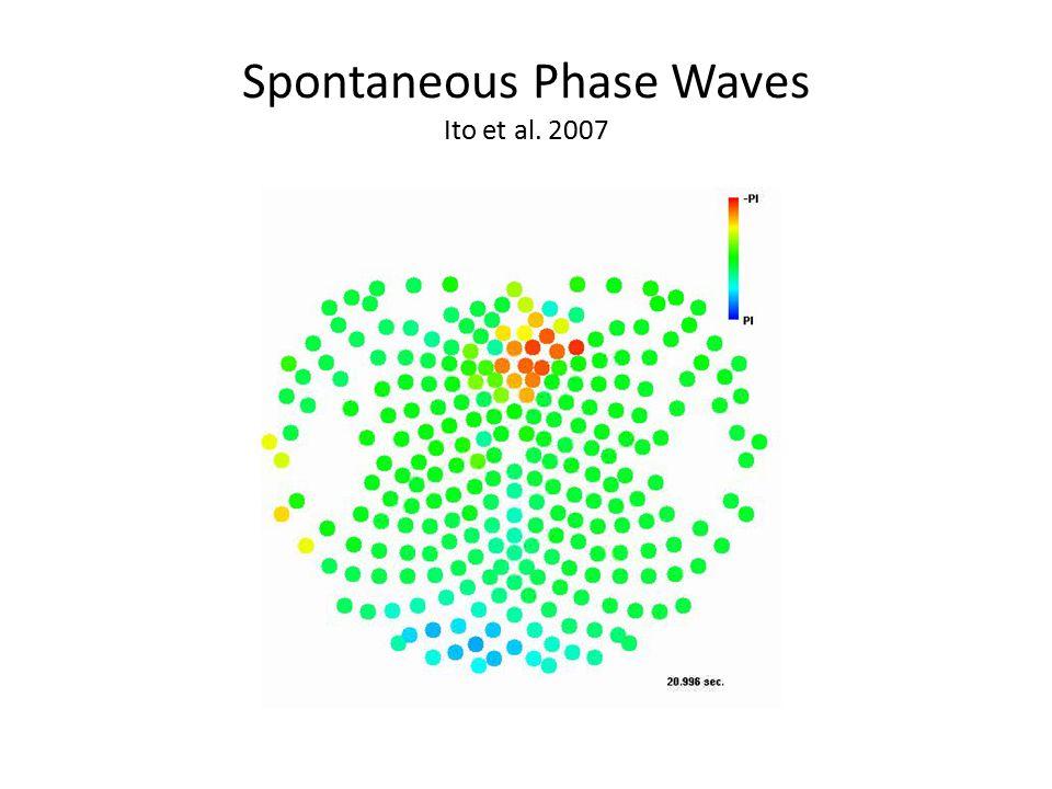 Spontaneous Phase Waves Ito et al. 2007