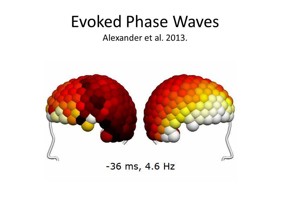 Evoked Phase Waves Alexander et al. 2013.