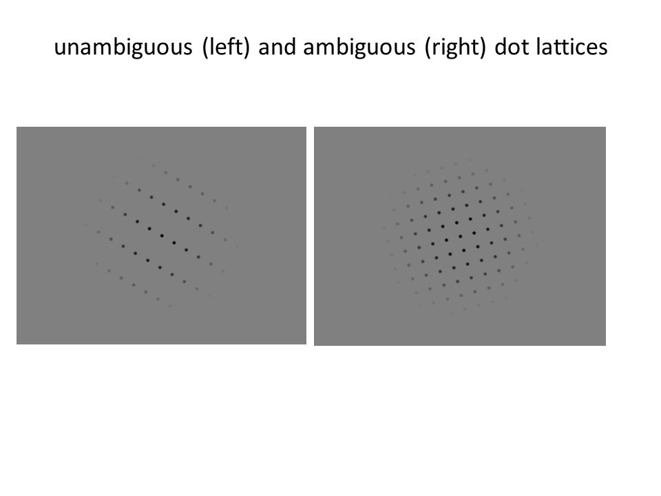 unambiguous (left) and ambiguous (right) dot lattices