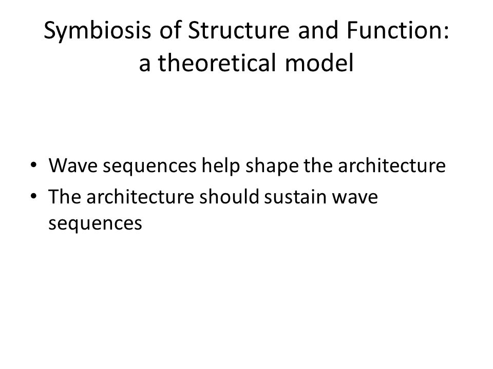 Symbiosis of Structure and Function: a theoretical model Wave sequences help shape the architecture The architecture should sustain wave sequences