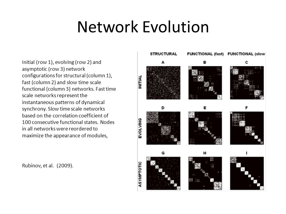 Network Evolution Initial (row 1), evolving (row 2) and asymptotic (row 3) network configurations for structural (column 1), fast (column 2) and slow time scale functional (column 3) networks.