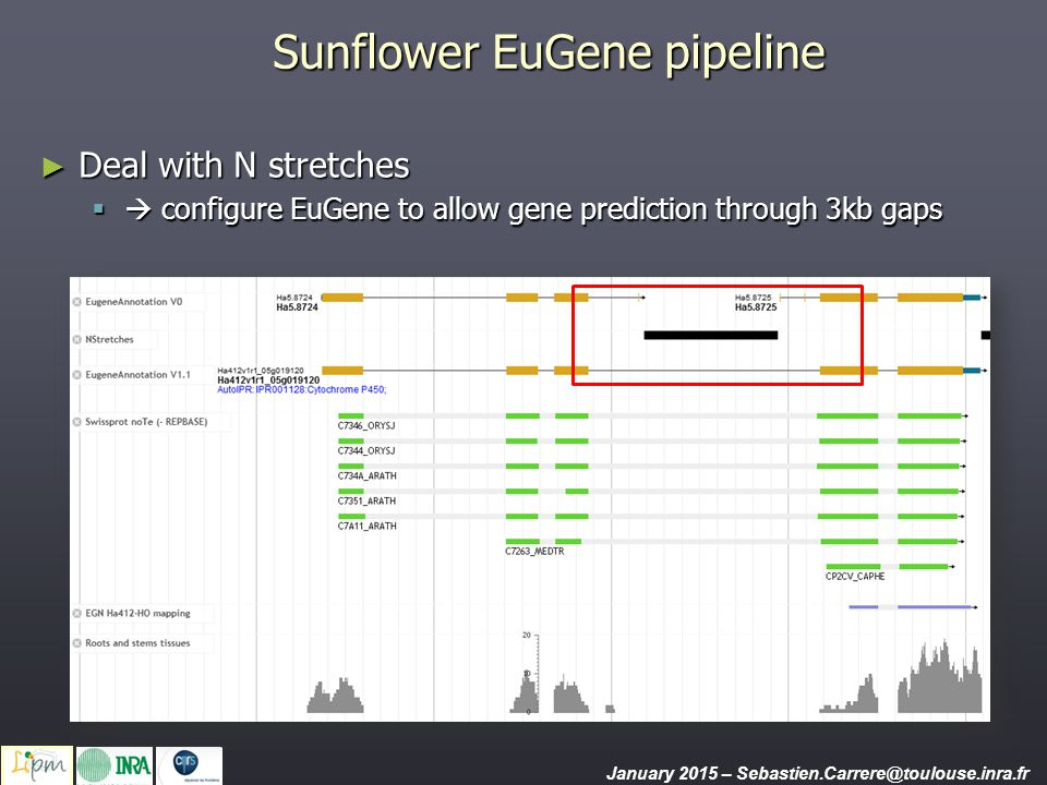 Sequence-based tools Blast server January 2015 – Sebastien.Carrere@toulouse.inra.fr