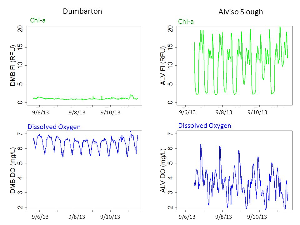 9/6/13 9/8/13 9/10/13 Dumbarton Chl-a Dissolved Oxygen 9/6/13 9/8/13 9/10/13 Alviso Slough Chl-a Dissolved Oxygen 9/6/13 9/8/13 9/10/13