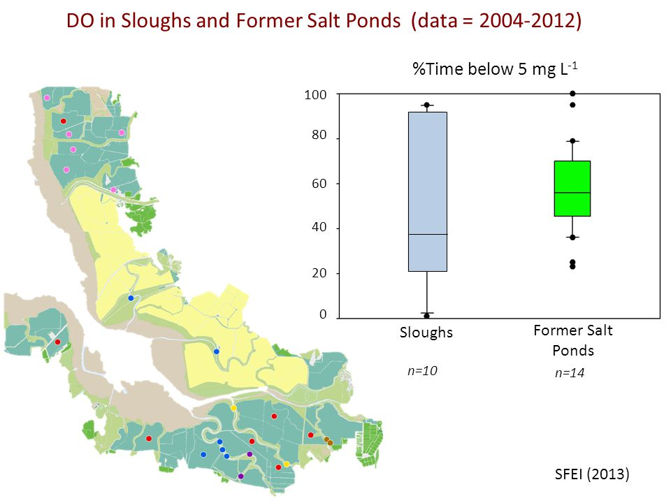 Sloughs Former Salt Ponds %Time below 5 mg L -1 n=10 n=14 SFEI (2013) DO in Sloughs and Former Salt Ponds (data = ) 0