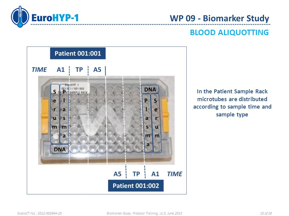 In the Patient Sample Rack microtubes are distributed according to sample time and sample type WP 09 - Biomarker Study BLOOD ALIQUOTTING EudraCT-No.: 2012-002944-25Biomarker Study, Protocol Training, v1.0, June 201310 of 26