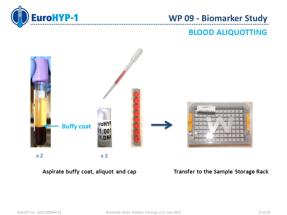 WP 09 - Biomarker Study BLOOD ALIQUOTTING Aspirate buffy coat, aliquot and capTransfer to the Sample Storage Rack EudraCT-No.: 2012-002944-25Biomarker Study, Protocol Training, v1.0, June 201313 of 26