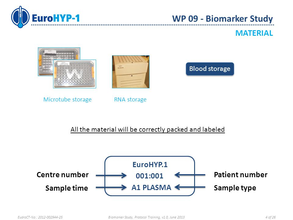 Microtube storage RNA storage Blood storage EuroHYP.1 001:001 A1 PLASMA Patient numberCentre number Sample type Sample time All the material will be correctly packed and labeled WP 09 - Biomarker Study MATERIAL EudraCT-No.: 2012-002944-25Biomarker Study, Protocol Training, v1.0, June 20134 of 26