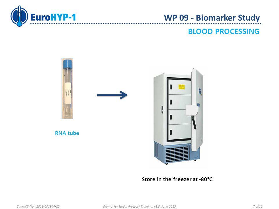 WP 09 - Biomarker Study SAMPLE SHIPMENT Send stored samples to the EuroHYP-1 Biobank at Barcelona RNA Storage Rack Sample Storage Rack EudraCT-No.: 2012-002944-25Biomarker Study, Protocol Training, v1.0, June 201318 of 26