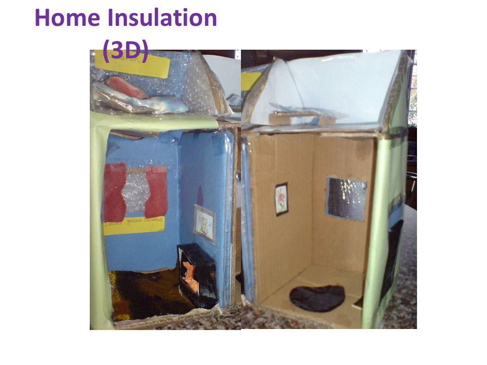 Home Insulation (3D)