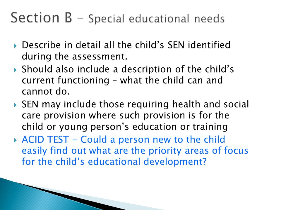Section B – Special educational needs  Describe in detail all the child's SEN identified during the assessment.