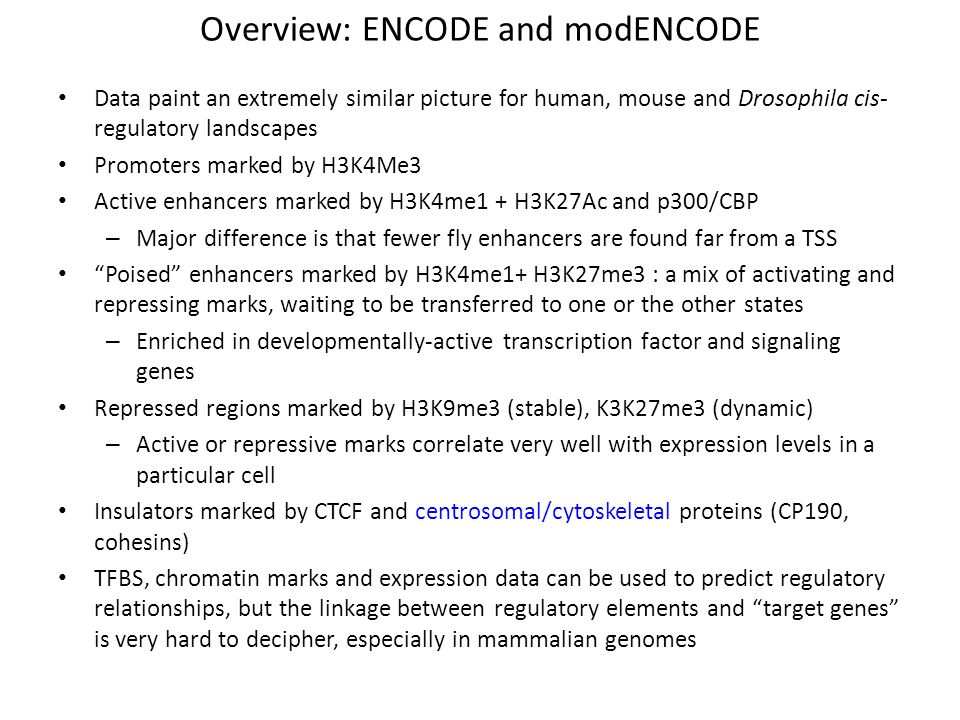 Overview: ENCODE and modENCODE Data paint an extremely similar picture for human, mouse and Drosophila cis- regulatory landscapes Promoters marked by
