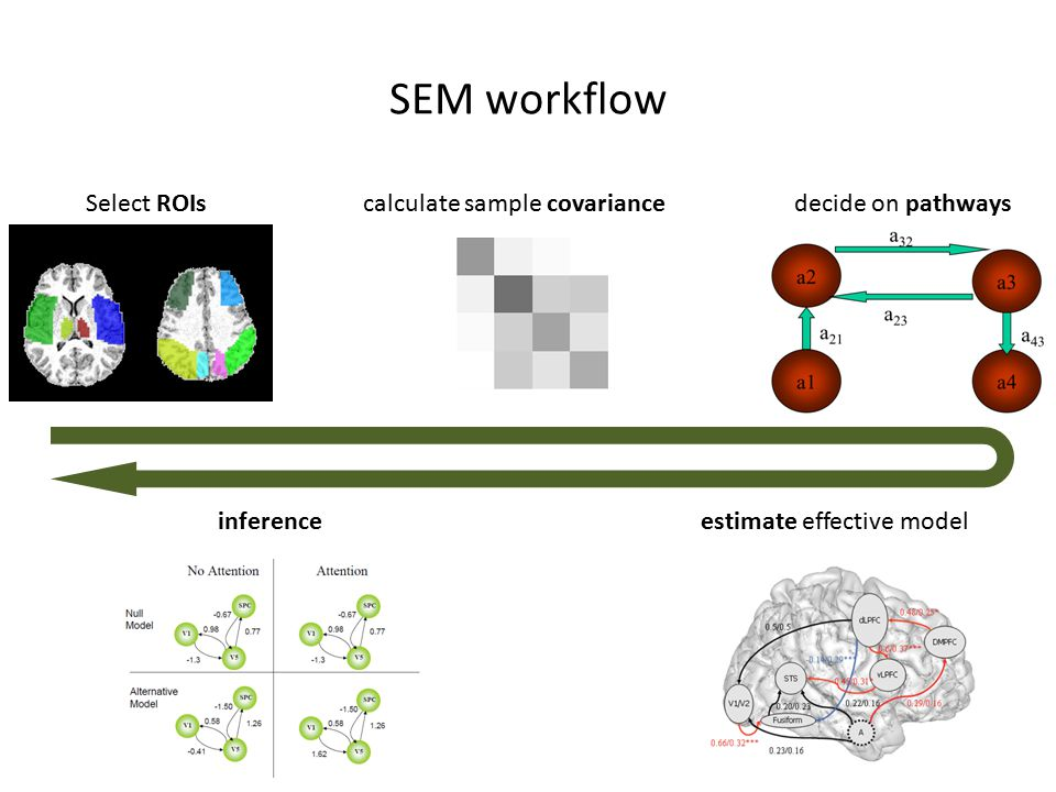 SEM workflow Select ROIscalculate sample covariancedecide on pathways estimate effective modelinference