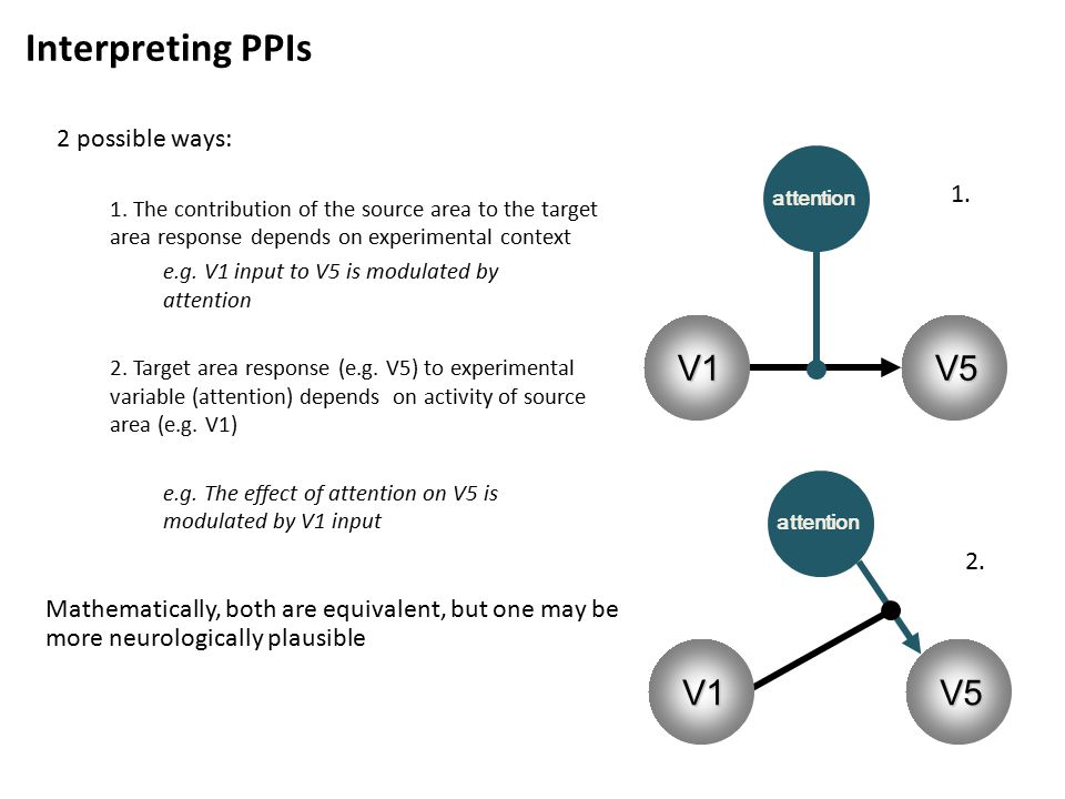Interpreting PPIs 2 possible ways: 1.