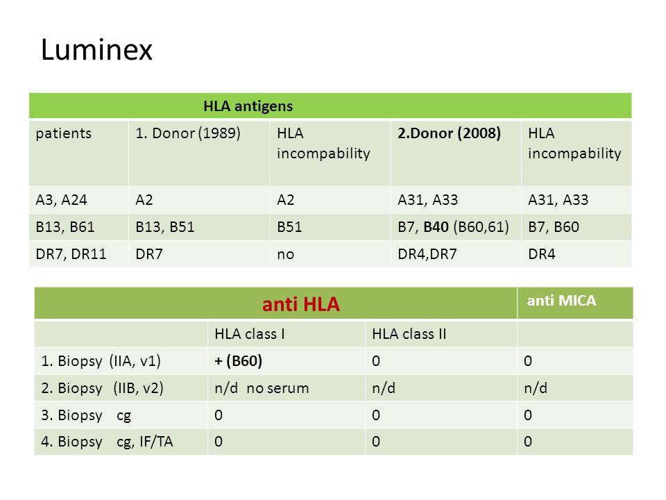 Luminex anti HLA anti MICA HLA class IHLA class II 1.
