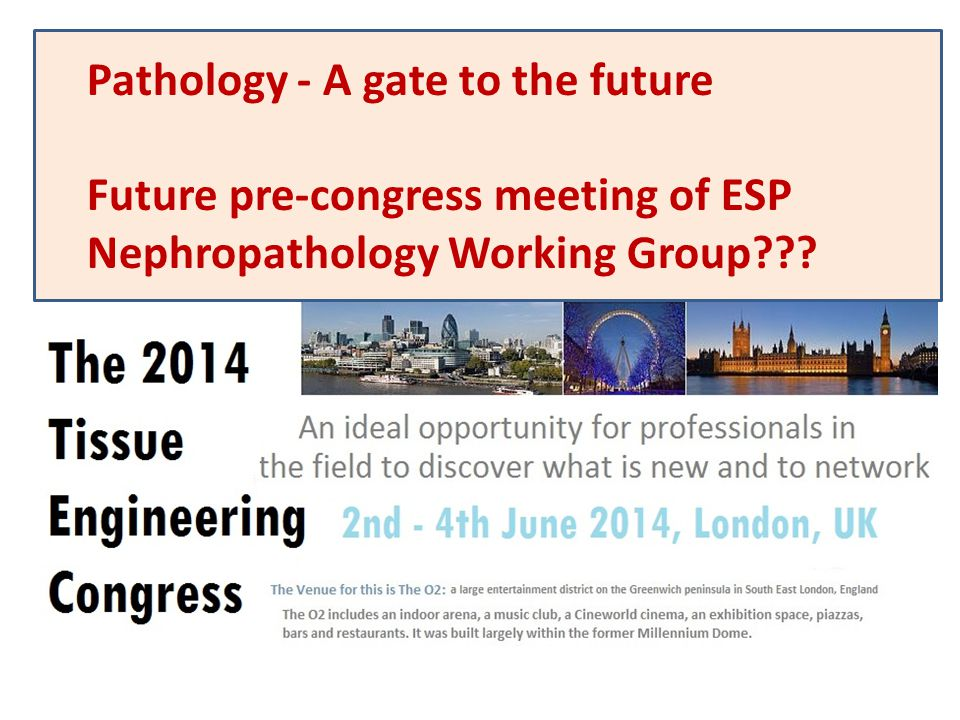 Pathology - A gate to the future Future pre-congress meeting of ESP Nephropathology Working Group