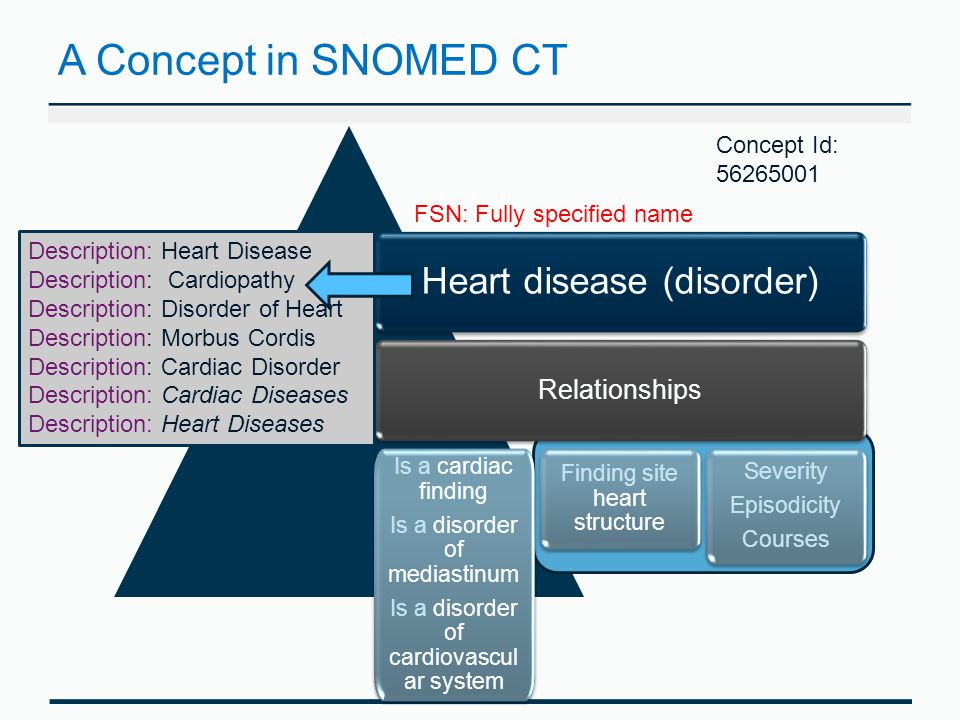 A Concept in SNOMED CT Heart disease (disorder) Relationships Is a cardiac finding Is a disorder of mediastinum Is a disorder of cardiovascul ar system Is a cardiac finding Is a disorder of mediastinum Is a disorder of cardiovascul ar system Finding site heart structure Severity Episodicity Courses Severity Episodicity Courses Description: Heart Disease Description: Cardiopathy Description: Disorder of Heart Description: Morbus Cordis Description: Cardiac Disorder Description: Cardiac Diseases Description: Heart Diseases FSN: Fully specified name Concept Id: 56265001