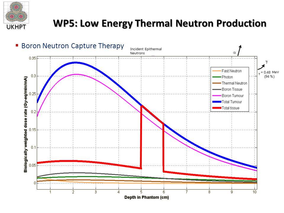 UKHPT WP5: Low Energy Thermal Neutron Production  Boron Neutron Capture Therapy
