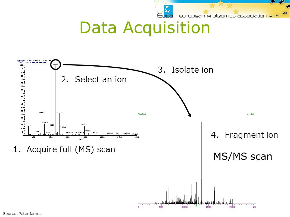 PMP Tag search- Tools that search peptides based on a MS/MS Sequence Tag –MS-Tag and MS-Seq, PeptideSearch Ion search or PFF - Tools that match MS/MS experimental spectra with theoretical spectra obtained via in-silico fragmentation of peptides generated from a sequence database –Mascot, Sequest, X!Tandem, OMSSA, ProID, … de novo sequencing - Tools that directly interpret MS/MS spectra and try to deduce a sequence –Convolution/alignment (PEDENTA) –De-novo sequencing followed by sequence matching (Peaks, Lutefisk, Sherenga, PeptideSearch) –Guided Sequencing (Popitam) In all cases, the output is a peptide sequence per MS/MS spectrum MS/MS based identification tools
