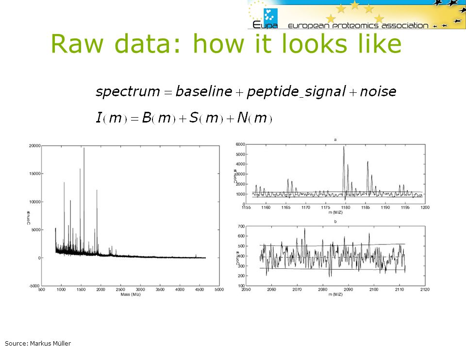 PMP Peptide fragmentation fingerprinting = PFF = ion search MS/MS database matching Enzymatic digestion In-silico digestion Protein(s)Peptides 340.695086 676.96063 498.8283 545.564 1171.967066 261.107346 342.51458 456.727405 363.268365 MS/MS spectra of peptides Ions peaklists …MAIILAGGHSVRFGPKAF AEVNGETFYSRVITLESTNM FNEIIISTNAQLATQFKYPN VVIDDENHNDKGPLAGIYTI MKQHPEEELFFVVSVDTPMI TGKAVSTLYQFLV … - MAIILAGGHSVR - FGPK - AFAEVNGETFYSR - VITLESTNMFNEIIIK - YPNVVIDDENNDK … Sequence database entry 361.107346 338.695086 676.96063 498.8283 1045.564 1171.967066 342.51458 457.827405 263.268453 Theoretical peaklist Theoretical proteolytic peptides Match Result: ranked list of peptide and protein candidates Theoretical fragmented peptides -MAIILAG -MAIILA -MAIIL -MAII -MAI -M -AIILAG In-silico fragmentation