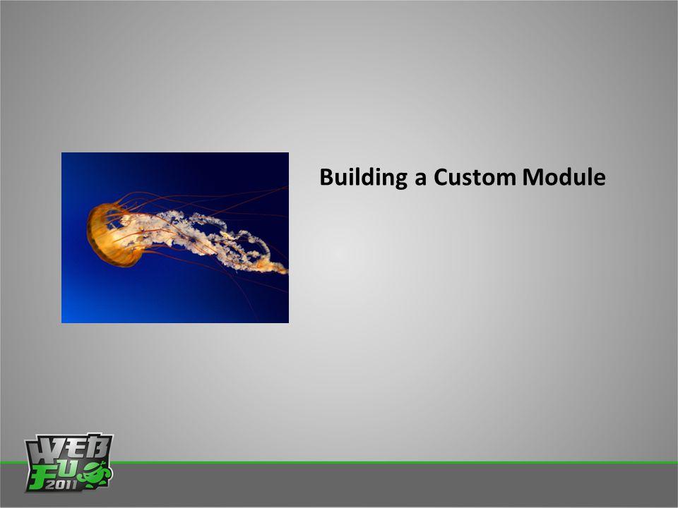 Building a Custom Module