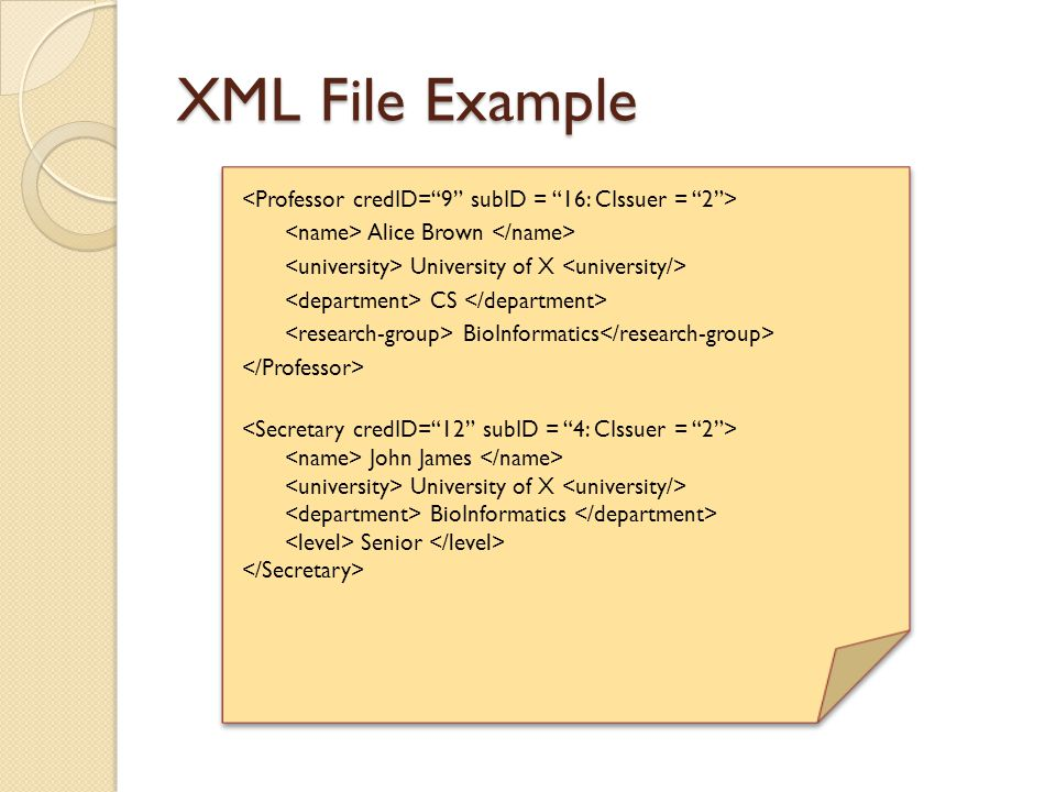 XML File Example Alice Brown University of X CS BioInformatics John James University of X BioInformatics Senior Alice Brown University of X CS BioInfo